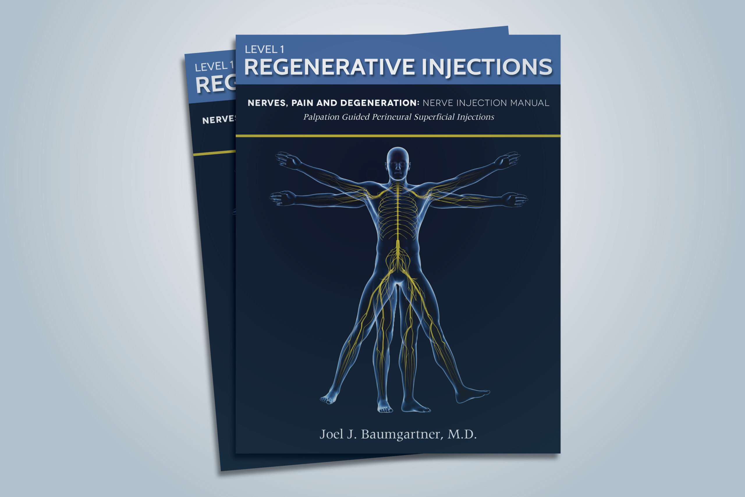 show the level one version of nerve regenerative injection